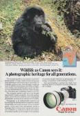 Canon-1982